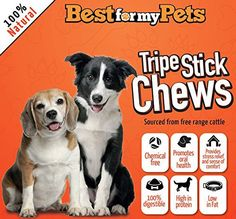 Best Natural Tripe Stick Chews - Grain-Free Chew Sticks for Puppies & Dogs - Great for Small or Senior Dogs - 100% Beef Long-lasting Chew Dog Treats - Hand-Inspected & USDA/FDA-Approved - Low in Fat - High in Protein - Healthy and Delicious All Natural Dog Chews - Your Dog Happy or Your Money Back (5 inches - 6 Oz Bag) - http://www.thepuppy.org/best-natural-tripe-stick-chews-grain-free-chew-sticks-for-puppies-dogs-great-for-small-or-senior-dogs-100-beef-long-lasting-c