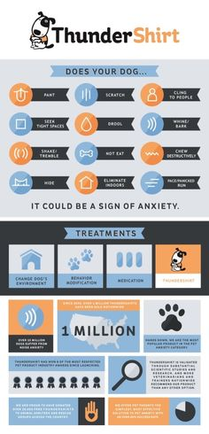 ThunderWorks, products designed to help with anxiety in dogs and cats.
