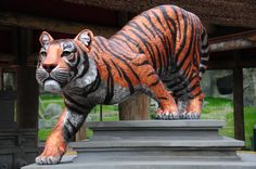 Trail of the Tiger