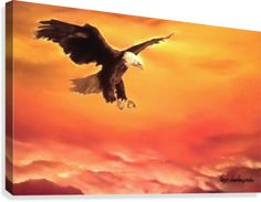 Canvas Print,  bird,wildlife,eagle,big,bald,sky,sunset,sunrise,flying,soaring,light,orange,bright,beautiful,fine,oil,painting,contemporary,scenic,modern,virtual,deviant,wall,art,awesome,cool,artistic,artwork,for,sale,home,office,decor,decoration,decorative,items,ideas,pictorem