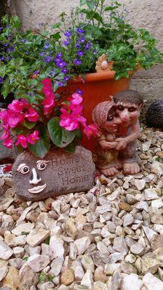 Love my garden 🌼