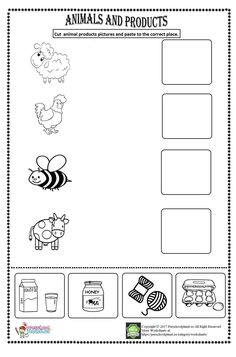 Animal Worksheets for Kids. 20 Animal Worksheets for Kids. Animals Worksheet Kids Esl Worksheet by Subtraction Kindergarten, Kindergarten Math Worksheets, Kindergarten Science, Preschool Learning Activities, Kindergarten Reading, Matching Worksheets, Animal Worksheets, Letter Worksheets, Worksheets For Kids
