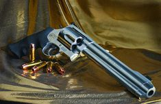 Smith & Wesson .500 Magnum 50 cal - www.Rgrips.com