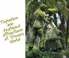 Image result for topiary plants