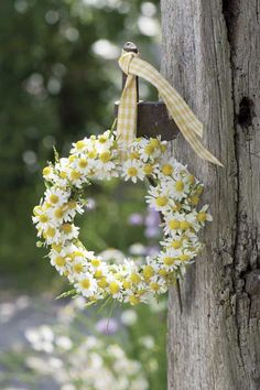 Country Spring with Daisy Wreath Deco Floral, Arte Floral, Daisy Hill, Corona Floral, Fleurs Diy, Yellow Cottage, Daisy Love, Bouquet, Spring Has Sprung