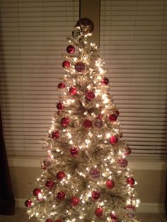My 49ers Christmas tree