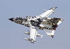 Well don't they have the most bad ass paint job ever!   4657 Panavia Tornado ECR German Air Force | Flickr - Photo Sharing!