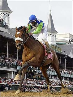 The Great thoroughbred, Barbaro