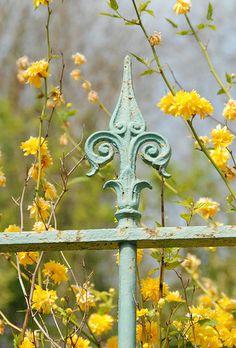 Railing, Giverny France #wildskyapothecary #france #gates