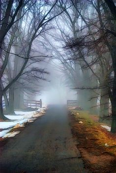 *Dreams of Winter's Mist by Lynchburg Virginia