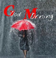 Morning Rain Quotes, Rainy Day Quotes, Funny Good Morning Quotes, Morning Greetings Quotes, Good Morning Beautiful Images, Good Morning Images Download, Good Morning Picture, Morning Pictures, Morning Pics