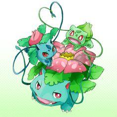 bulbasaur, ivysaur y venusaur Venusaur Pokemon, Pokemon Bulbasaur, All Pokemon, Cute Pokemon, Pikachu, Bulbasaur Evolution, Grass Type Pokemon, Chibi, All Anime