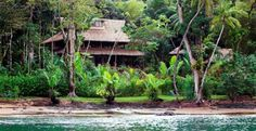 Copa de Arbol Hotel | Two Weeks in Costa Rica