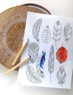 Get your free printable colouring page or poster every week by signing up to We Are Scout.
