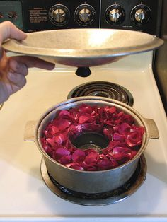 Distilling rose water...great for skin care...