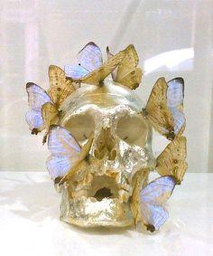 butterflies and skulls
