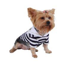 Dog Sailor Boy Costume - Blue - Tip Top Accessory Shop