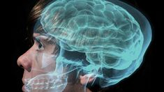 8 Ways to Train Your Brain to Learn Faster and Remember More