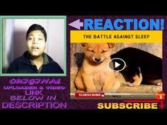 The Battle against sleep REACTION!