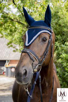 long blue fly bonnet, navy and strass fly bonnet, long model fly veil, horse veil blue, pony fly vei Dressage Bridle, Dressage Horses, Horse Tack, Horse Stalls, Horse Saddles, Horse Barns, Equestrian Gifts, Equestrian Outfits, Equestrian Style