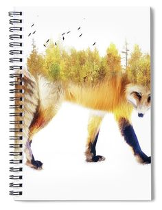 Notebooks For Sale, Autumn, Fall