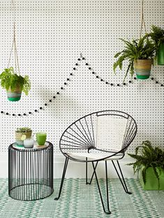 MINTY WARES | Styling for green indoor spaces with hanging plants, quirky wallpaper and wire patio furniture. Charlotte love