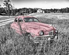 photo en noir et blanc avec une touche de couleur