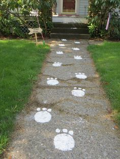 Teddy Bear Picnic Themed Party- bear paw prints made with a stencil and flour. Teddy Bear Picnic Themed Party- bear paw prints made with a stencil and flour. Paddington Bear Party, Polar Bear Party, Ours Paddington, Teddy Bears Picnic Party, Picnic Birthday, Safari Birthday Party, 2nd Birthday, Birthday Ideas, Lumberjack Birthday Party
