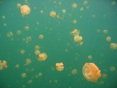 Os mais incríveis lagos da Terra « Agregador de Links