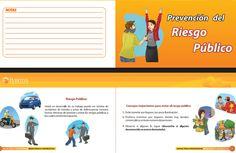 SGSST | Manual para la Prevención del Riesgo Publico y Seguridad Vial.