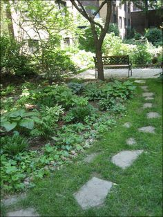Natural stepping stones across lawn