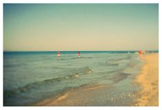 Signed Photograph  Fine Art Photography  Beach by AliciaBock, $35.00