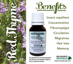 Red Thyme Essential Oil  helps stimulate the brain and helps memory and concentration. It is also known to help soothe the symptoms of migraine headaches. Helpful for Fibromyalgia. Thyme is understood to be one of the most potent antiseptic essential oils. #aromatherapy