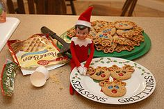 elf baked reindeer cookies for the family