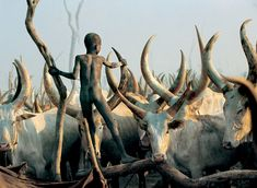 Powerful Photographs Show The Daily Life of The Dinka People Of Southern Sudan