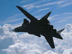 Su-47 berkut....the sheer beauty of this thing
