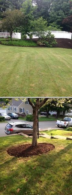 Choose this company if you need expert lawn care and landscaping services. Their professional lawnmowers also offer mulching and tree trimming assistance.