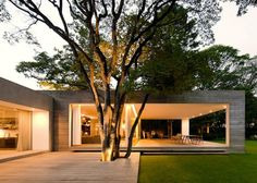 Grecia House by Isay Weinfeld #deck #tree