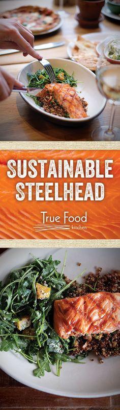 Looking for a new True Food Kitchen favorite? Swing by and give our Sustainable Steelhead a try. We serve it up with arugula, golden beets and cilantro pumpkin seed pesto.