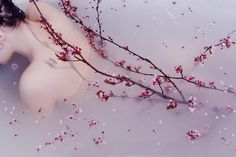 #CherryBlossom #MilkBath