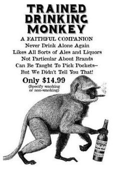 Sweet mother of baby Jeebus, I need one of these Trained Drinking Monkeys!