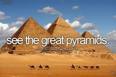 Yes, though if you have time look up a picture taken from the sky of the pyramids. I always imagined the pyramids to be in the middle of nowhere but city development is rapidly approaching the pyramid site. Still amazing and would love to go inside.