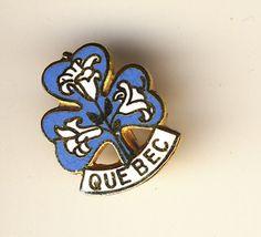 GIRL GUIDE PIN BADGE QUEBEC   eBay