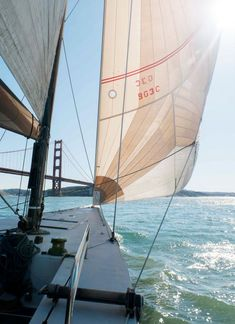 5 Popular Types of Sailboats and Why They're Loved – Voyage Afield Cruise Italy, San Francisco California, Sail Away, Land Scape, Sailing Ships, Sailing Boat, Strand, Summer Vibes, Adventure Travel
