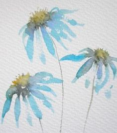 £40 ~ ECHINACEA 3 watercolour painting original art by TheMinervaGallery by melba