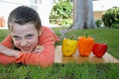 Healthy Halloween, Halloween Treats, Scary Faces, How To Make Lanterns, Halloween Jack, Jack O, Stuff To Do, Pumpkin, Stuffed Peppers