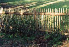 Chestnut-Fencing-in-Kent-Sussex. Picket Fences, Garden Gates, Fencing, Branches, Woodland, Entrance, Garden Design, Garden Ideas, Design Ideas