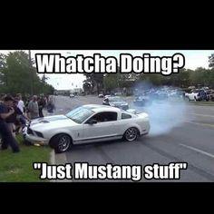 Mustang Car Show Crash meme - Page 2 - Yellow Bullet Forums Mustang Meme, Mustang Girl, Ford Mustang, Car Memes, Car Humor, Funny Memes, Hilarious, Ford Sport, Sport Cars