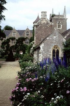 Cornwall, England... beautiful flower gardens