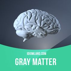 """""""Gray matter"""" means """"intelligence, 'brains'"""". Example: Ted keeps making mistakes in his job. I don't think he has a lot of gray matter. #idiom #idioms #saying #sayings #phrase #phrases #expression #expressions #english #englishlanguage #learnenglish #studyenglish #language #vocabulary #dictionary #grammar #efl #esl #tesl #tefl #toefl #ielts #toeic #englishlearning"""